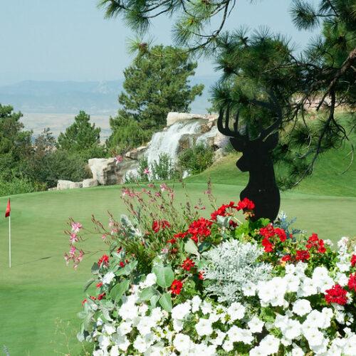 sanctuary golf
